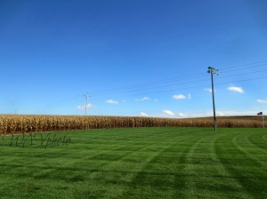 Field of Dreams, Iowa